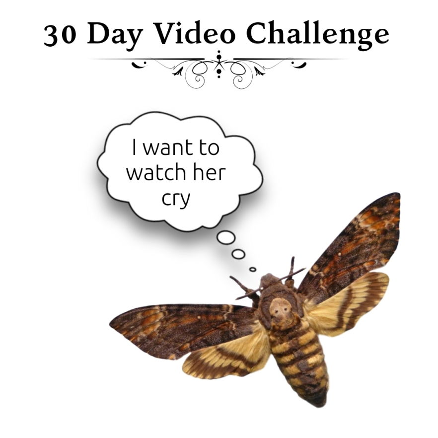 30 Day Video Challenge