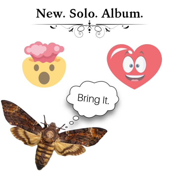New. Solo. Album.